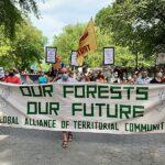 Política ambiental de Bolsonaro é alvo de protestos nos Estados Unidos